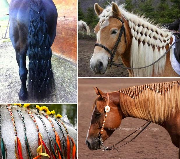 amazing creativity horse hair