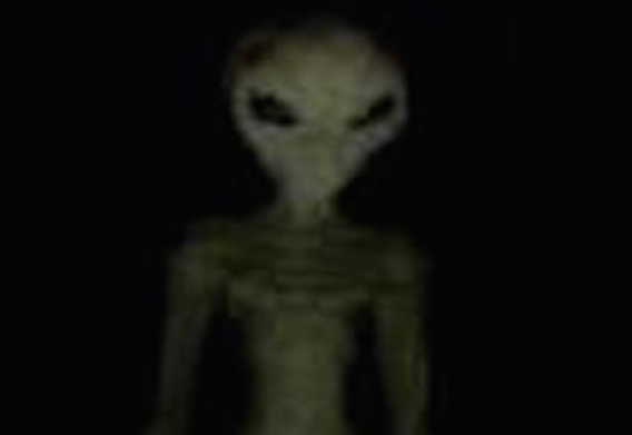 Real Alien Caught Going Through People's Garbage, UFO Sightings