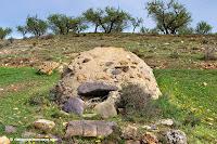 Lituenigo ruta senderismo oficios perdidos Moncayo bodegas