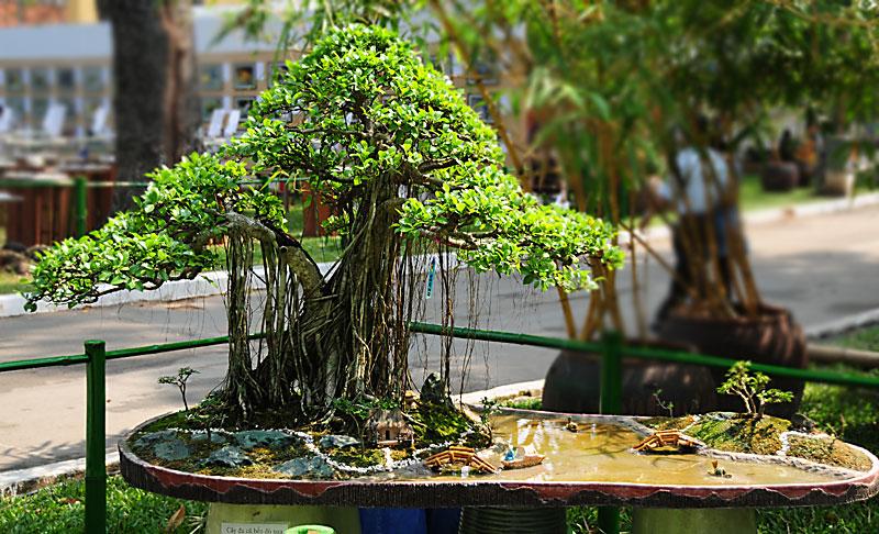 Breeze Me Wonderful Miniature Landscapes In Saigon Vietnam