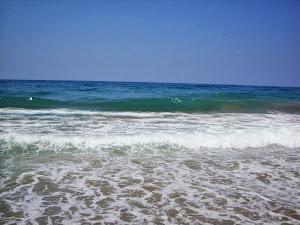Älskade hav