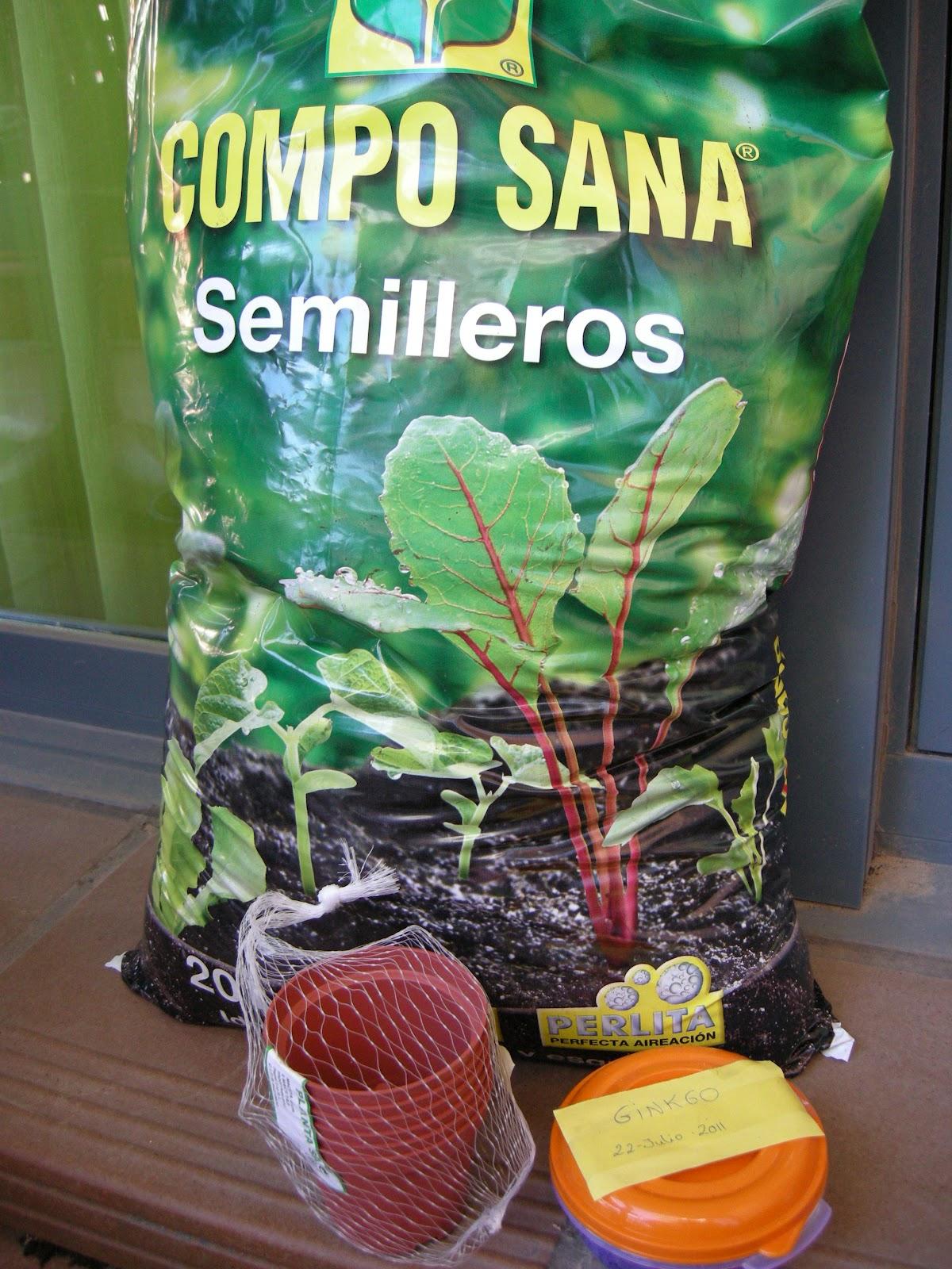 El telar de aracne semillero de gingkos - Tierra para semilleros ...