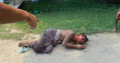 hardy boy pembunuhan etnik rohingya di myanmar   18 sg photos