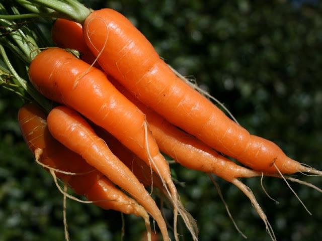 Alimento para la Piel,  Zanahoria...