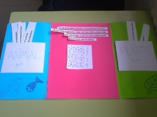 Made In England Foldables For Science
