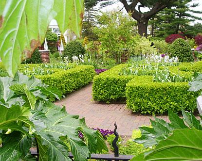 Botanical garden beautiful design