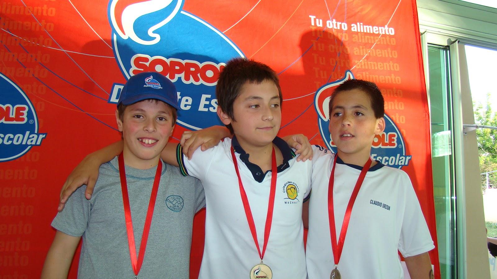 Academia de natacion vi a del mar final soprole 2012 for Viveros en penalolen