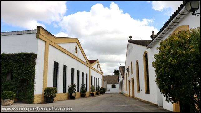Bodegas-Lustau-Jerez
