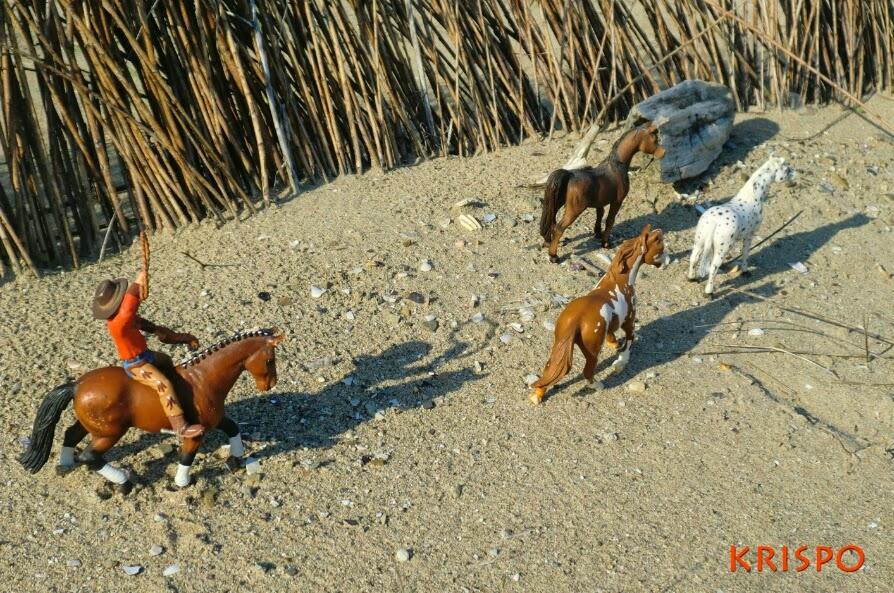vaquero lacero atrapando caballos en miniatura