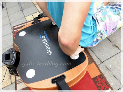 Skandika Home Vibration Plate 300 - Übung Trizeps DIP