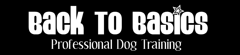 BacktoBasicsDogTraining - NickyDogTrainer
