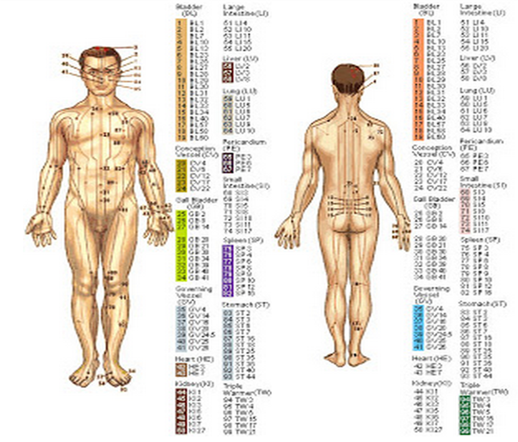Acupressure Points For Strengthening Body Organs To Cure Diseases