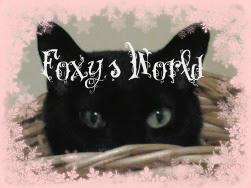 Foxy's World