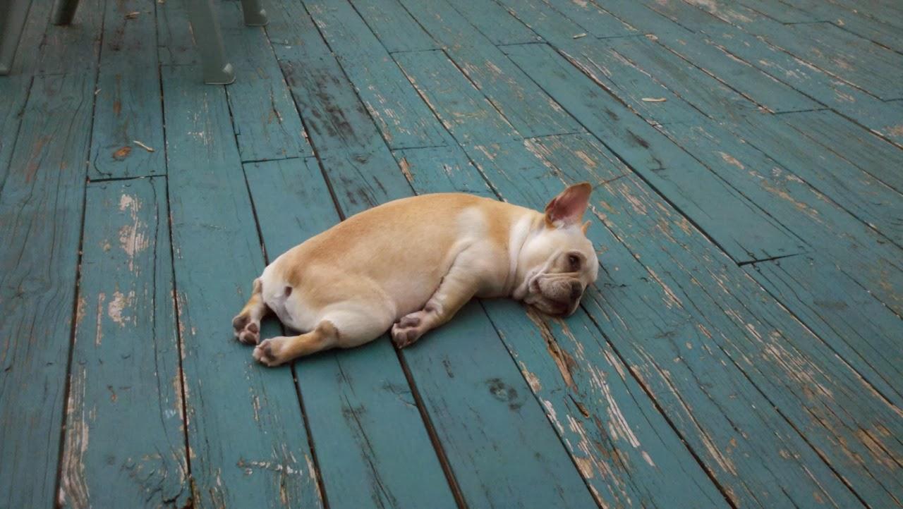 картинки очень устал