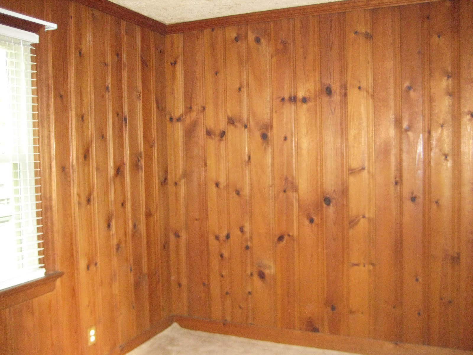 Sheshe the home magician an entire room becomes a blank How to cover old wood paneling