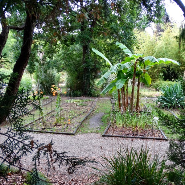 The Botanic Gardens Of Bordeaux 1/2: Jardin Public