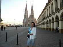 Catedral de Lujan 2011 Argentina