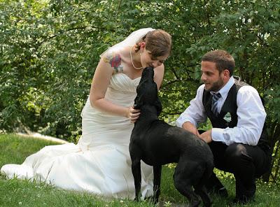 perro besando a la novia