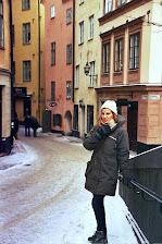 Estocolmo, a 20º bajo cero