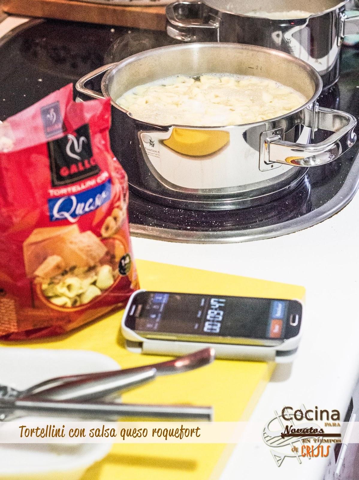 Cocina para novatos en tiempos de crisis tortellini de queso con salsa roquefort - Cocina para novatos ...