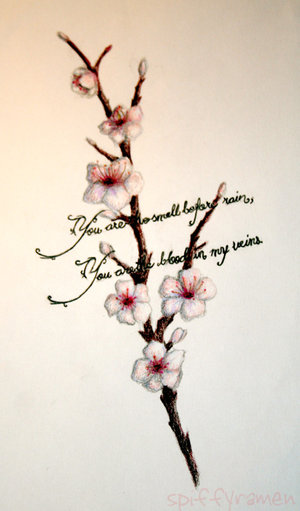 cherry blossom japanese art. of a cherry blossom can#39;t