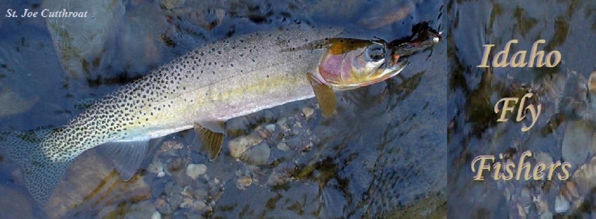 Idaho Fly Fishers   Idaho Montana Fishing   Fly Fishing Trips, Idaho