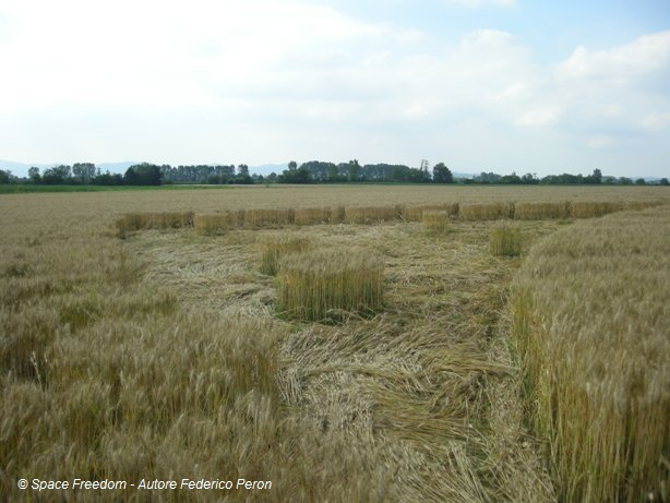 http://silentobserver68.blogspot.com/2011/06/crop-circle-2011-una-strepitosa.html