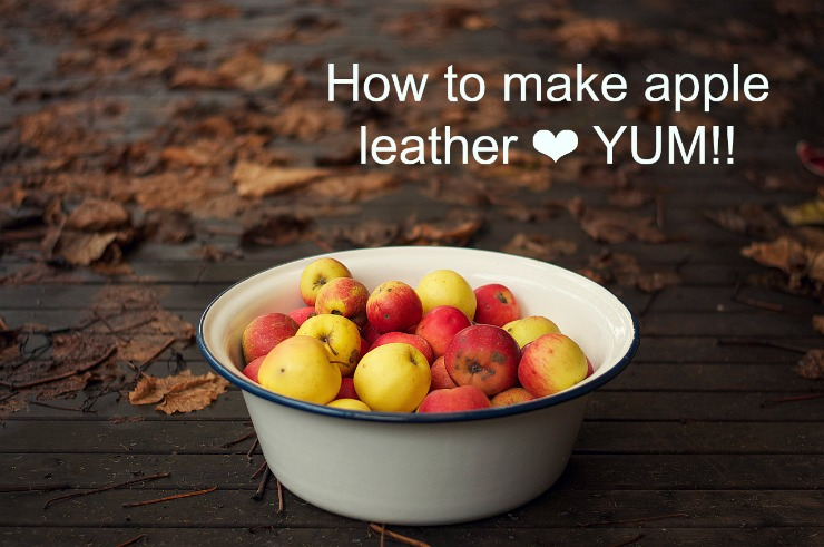 Foxs Lane: How to make fruit leather SO YUM!!