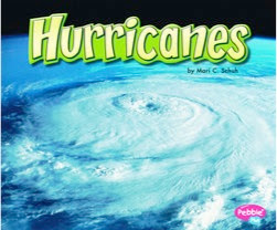 bookcover of Schuh's Hurricanes
