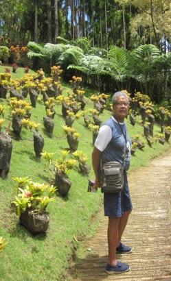 René Rudier aujourd'hui,de retour dans sa Martinique natale...