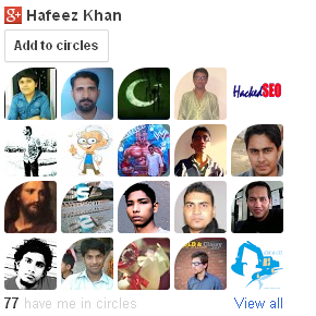 Google Plus Followers Widget