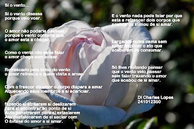 Poesia na foto (13)