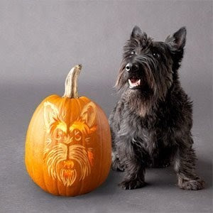 Pumpkin Carving Ideas - Dogs On Pumpkins