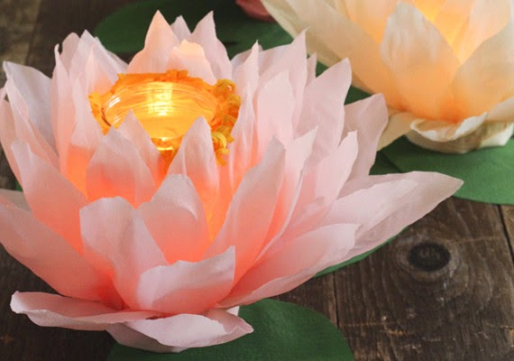 Como Hacer un Fanal de Flor