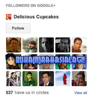 Blogger Google+ Followers.