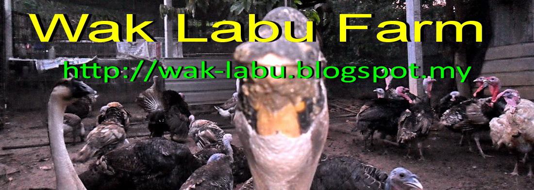 Wak Labu Farm