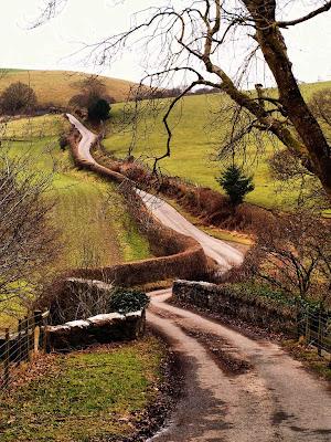 Sendero Verdes Prados Caminos Rurales