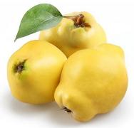 Tratamente si remedii naturiste cu gutui