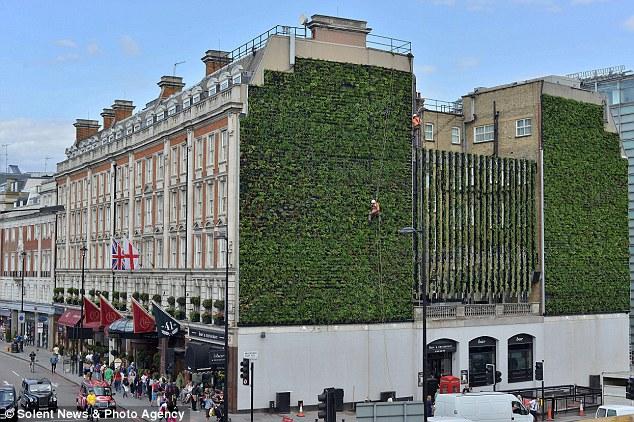 jardin vertical londres