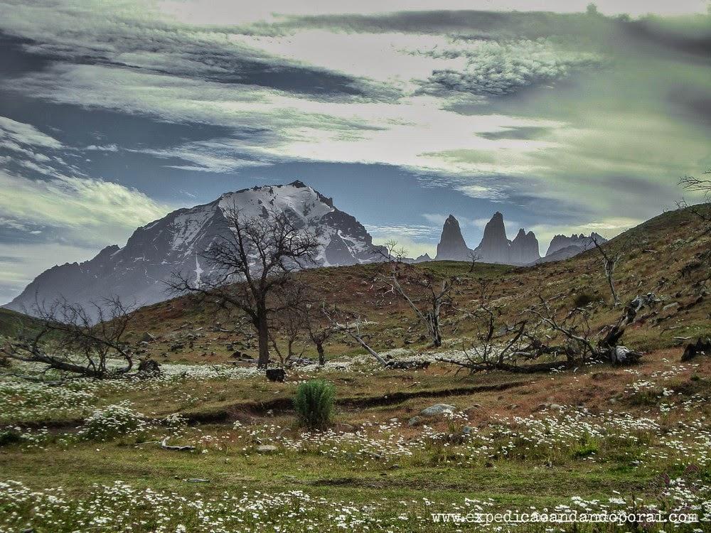 Caminho para Laguna Azul no Parque Torres del Paine