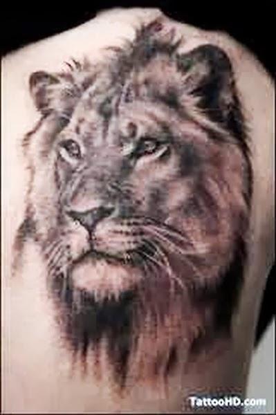 Best Animal Tattoos, Best Lion Tattoos (Gallery 1)