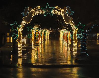 Parque en España  super adornado con luces