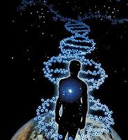 Το κβαντικό άλμα της συνείδησης και το φαινόμενο του 100ου πιθήκου