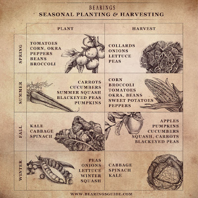 Seasonal Plant and Harvest Guide