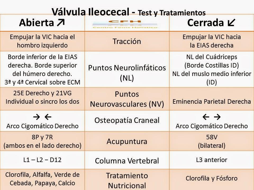 Valvula Ileocecal - CENTRO FÉNIX