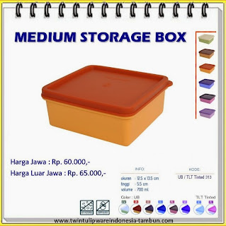 Medium Storage Box | MSB Tulipware 2013