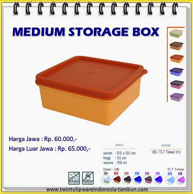 medium storage box tulipware 2013