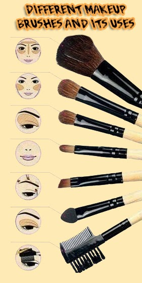 Brushes and Where to use them