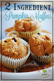 2-INGREDIENT PUMPKIN MUFFINS