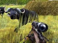 Cabelas Dangerous Hunts pc